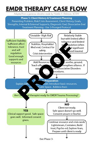 Therapy Case Flow Chart
