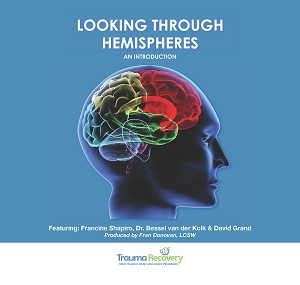 DVD - Looking Through Hemispheres